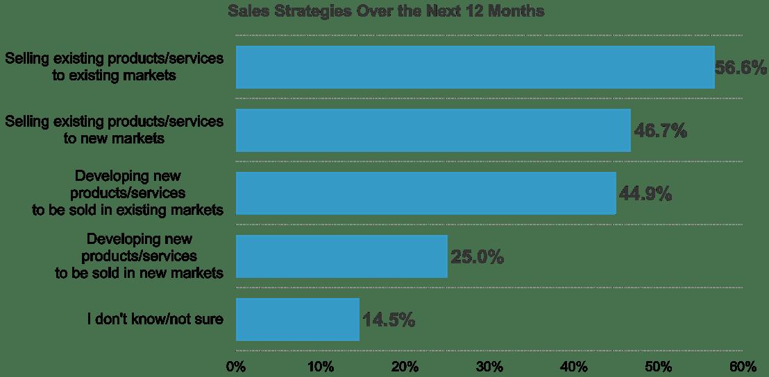 2021 Sales Strategies