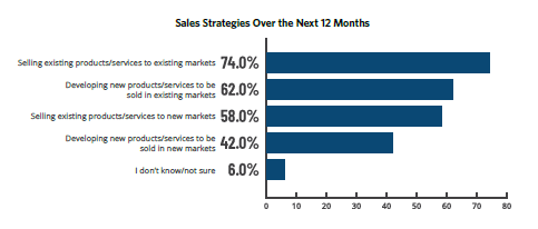 Sales Strategies for Manufacturing